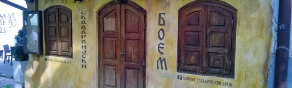 VSNM opštine Borovo organizovalo izlet u Beograd
