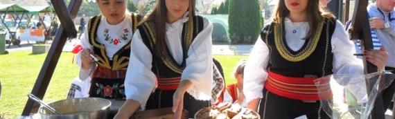 Jubilarna 10.Gužvarijada i Sajam starih zanata i običaja u Dalju
