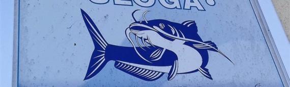 Prodaja ribolovnih dozvola za 2019.