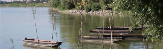 ZŠRU Vukovar: Od sutra ribolov dozvoljen i na Staroj Vuki i Grabovu
