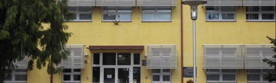 Od ponedeljka u Osnovnu školu Borovo vraćaju se učenici nižih razreda
