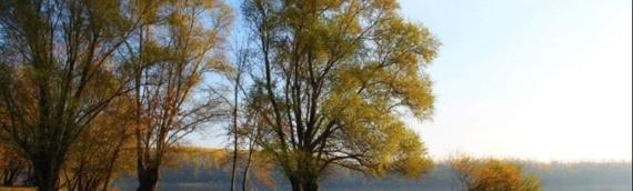 "Foto-konkurs za 8. ""Borovsku razglednicu"" otvoren do 31. oktobra"