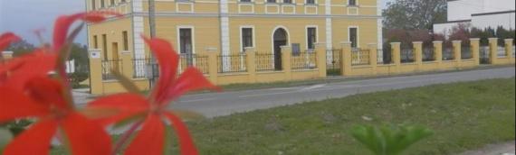 Dalj: Dani otvorenih vrata Preduzetničko-razvojnog centra opštine Erdut