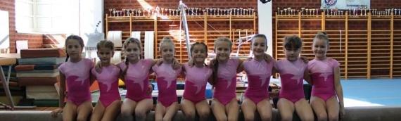 Vukovarske gimnastičarke na takmičenju u Slavonskom Brodu bile uspešne u svim kategorijama
