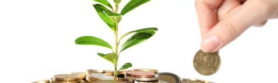 Ministarstvo poljoprivrede: Isplata prve rate direktnih plaćanja i IAKS mera ruralnog razvoja