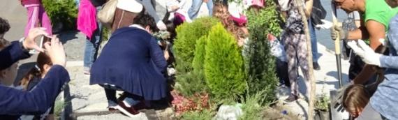 Evropski dom Vukovar: Akcijom do zajedništva!
