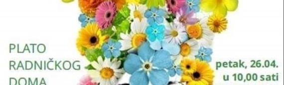 Festival cveća u Vukovaru