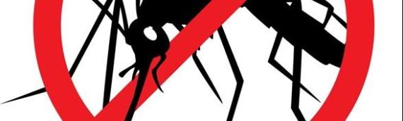 Aviotretiranje komaraca u Borovu u sredu, 2.septembra