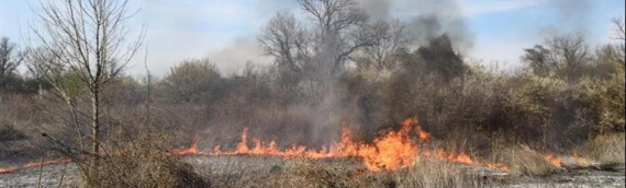 MUP: Do 31. oktobra zabranjeno paljenje vatre na otvorenom bez odobrenja