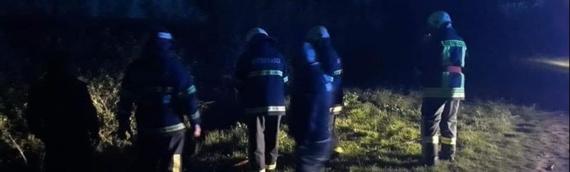 Borovski vatrogasci sinoć ugasili požar na obali Dunava u Borovu