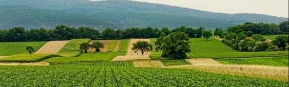 Obrtna sredstva za ruralni razvoj uz kamatnu stopu od 0,5 %
