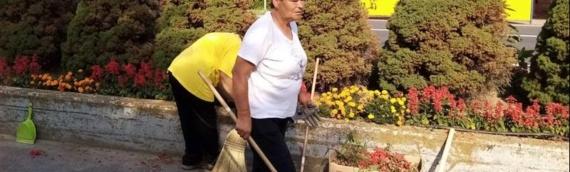 Opština Borovo na javnim radovima zaposlila sedmero radnika