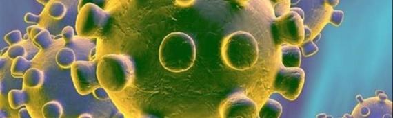 Novih 667 slučajeva zaraze koronavirusom, umrlo 9 osoba