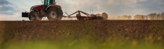 Dalj: Obaveštenje iz PORC-a poljoprivrednicima