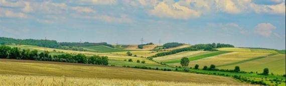 Novi konkurs za očuvanje i razvoj genetskih izvora u poljoprivredi